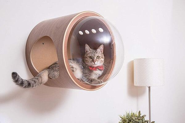 Kedi Mobilyaları